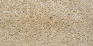 11ракушечник серый Каякентский